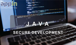 Java Secure Development